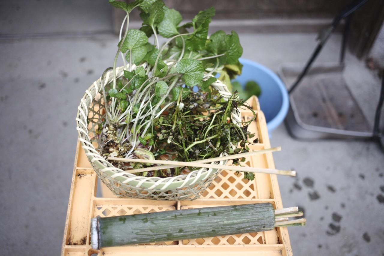 山菜と竹箸